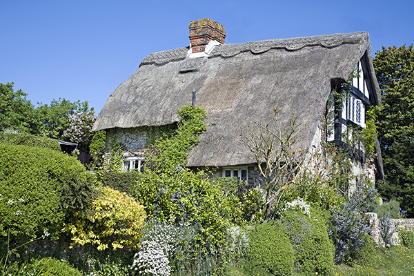 Cottage in Sussex